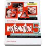 Matematica 2000 Consolidare 2014-2015 algebra, geometrie clasa a V-a partea a II-a, Semestrul al II-lea (Sorin Peligrad)
