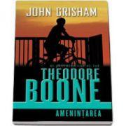 John Grisham, Al patrulea caz al lui Theodore Boone - Amenintarea