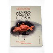 Calatoria catre fictiune - Mario Vargas Llosa
