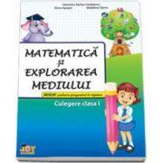 Matematica si explorarea mediului culegere pentru clasa I (Valentina Stefanescu Caradeanu)