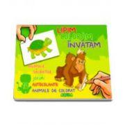 Lipim, Coloram, Invatam. Animale Salbatice, Jocuri, Autocolante, Animale de colorat