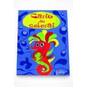 Carte de colorat. Colectia Lumea Culorilor