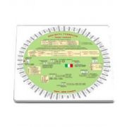 Discheta verbelor - Limba italiana - Camelia Stan