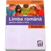 Limba Romana pentru clasa a VII-a. Exercitii - Nicoleta Ionescu si Mihaela Georgescu