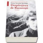 Victor Ieronim Stoichita, Despartirea de Bucuresti. O povestire