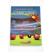 Matematica exercitii si probleme pentru clasa a XI-a