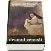 Augustin Buzura, Drumul cenusii