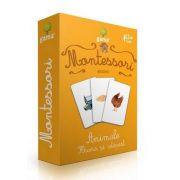 Montessori, Asocieri - Animale. Hrana si adapost
