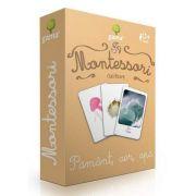 Montessori, Clasificare - Pamant, aer, apa