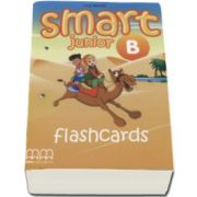 Smart Junior B Flashcards - H. Q. Mitchell