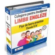 Daniela Stefania Ionescu, Culegere pentru invatarea limbii engleze - Fise de lucru practice Clasele 0 - IV