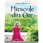 Miracole din Cer. O fetita, calatoria ei la Cer si povestea ei uimitoare de vindecare de Christy Wilson Beam