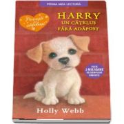 Harry, un catelus fara adapost de Holly Webb