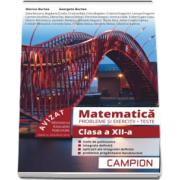 Matematica, probleme si exercitii - Teste, pentru clasa a XII-a - Profilul tehnic - Semestrul II - Autori: Marius Burtea si Georgeta Burtea