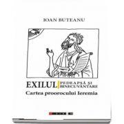 Exilul - pedeapsa si binecuvantare. Cartea proorocului Ieremia de Ioan Buteanu