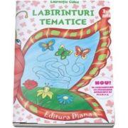 Labirinturi tematice pentru 3-4 ani (Laurentia Culea)