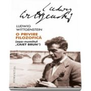 O privire filozofica - asa numitul - Caiet brun - Traducere de Catalin Cioaba si Mircea Flonta Prefata de Mircea Flonta