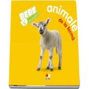 Bebe învață: Animale de la fermă