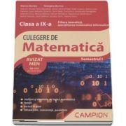 Marius Burtea - Culegere de matematica, clasa a IX-a - Filiera teoretica, specializarea matematica-informatica - Semestrul I