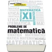 Probleme de matematica pentru clasa a XI-a - Consolidare (Editia a IV-a) - Ovidiu Badescu