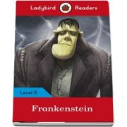 Frankenstein - Ladybird Readers (Level 6)