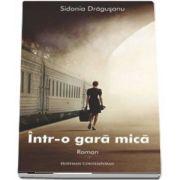 Sidonia Dragusanu, Intr-o gara mica (Colectia Hoffman Contemporan)