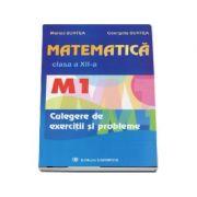 Matematica culegere de exercitii si probleme M1, clasa a XII-a