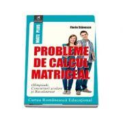 Probleme de calcul matriceal de Stanescu Florin