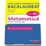 Simularea examenului de bacalaureat. Matematica. Clasa a XI-a. Profil tehnologic. 30 de de teste, dupa modelul M. E. N.