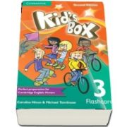 Kids Box Level 3 Flashcards (pack of 109)