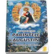 Ne vorbeste parintele Augustin ... din bratele lui Hristos (vol. IV)
