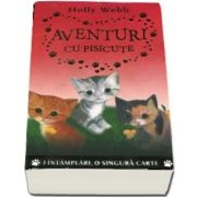 Aventuri cu pisicute. 3 intamplari, o singura carte - Holly Webb