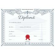 Diploma - Format A4 (model imagine academic silver)