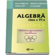 Algebra pentru clasa a VI-a. Excelenta