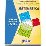 Matematica. Manual pentru clasa a VII-a - Mihaela Singer