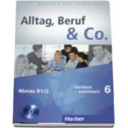 Alltag, Beruf and Co. Kurs Und Arbeitsbuch 6 MIT Audio CD Zum Arbeitsbuch