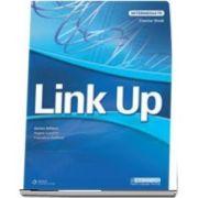 Link Up Intermediate. Test Book