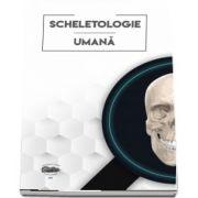 Scheletologie umana de Sarig Norbert Attila