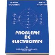 Culegerea fizica electricitate pentru liceu CD