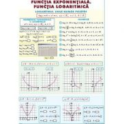 Functia exponentiala. Functia logaritmica. Integrala definita. Plansa