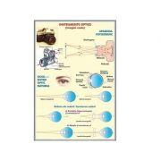 Plansa Instrumente optice I. Imagini reale. Instrumente optice II Imagini virtuale