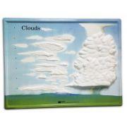 Set activitati Norii