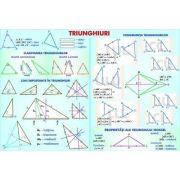 Triunghiuri. Siruri numerice. Planse