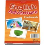 New English Adventure PL 3/GL 2 Flashcards