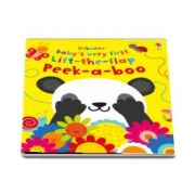 Babys very first lift-the-flap peek-a-boo