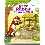 Brer Rabbit Down the Well