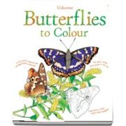 Butterflies to colour