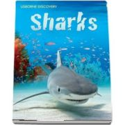 Discovery: Sharks