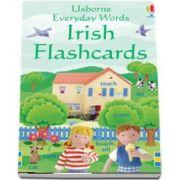 Everyday Words Irish flashcards
