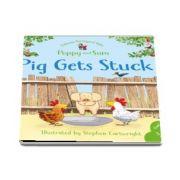 Pig Gets stuck
